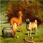 Yorkshire Terrier, Greyhound & Pug 1880 Digitally