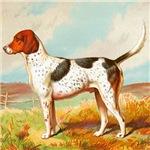 Foxhound Cassell 1881 Digitally Remastered