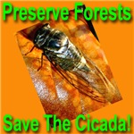 Preserve Forest Save The Cicada!
