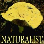Naturalist Cheese Mushroom