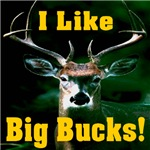 I Like Big Bucks!