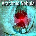 Arachnid Nebula