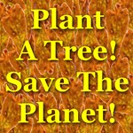 Plant A Tree! Save The Planet! Oak Leaf Collage
