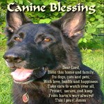 Canine Blessing for home, family, dogs, cats, pets