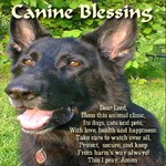 Canine Blessing for Animal Clinics
