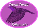 Tweet Tweet Follow Me Flying Bird