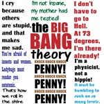 Big Bang Theory Quotations