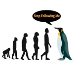 Stop following me penguin