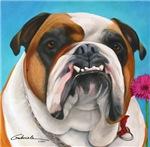 English Bulldog Fawn