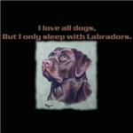 I only sleep with chocolate Labradors