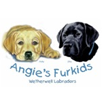 Custom Labrador Retriever Designs