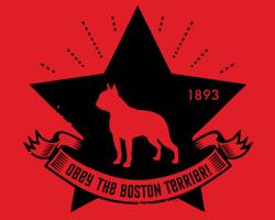 Boston Terrier Star Icon