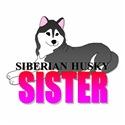 Black Siberian Husky Sister
