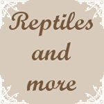 Reptiles and More