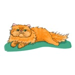 Red Persian Cat Greeting Cards