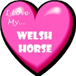 I Love My Welsh Horse