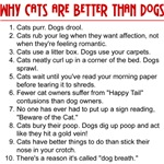 Why Cats Are Better Than Dogs T-Shirts