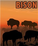 Graphic Bison