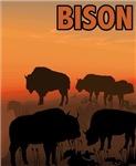 Graphic Bison