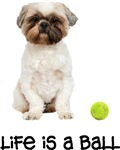 Lhasa Apso Life Is A Ball