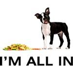 Boston Terrier Poker