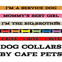 Dog Collars and Pet Tags