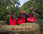 Three Musketeers Scottie Gifts