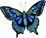 Wild Blue Butterfly