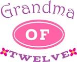 Grandma Of Twelve T-shirt Gifts
