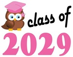 Class of 2029 Graduation Tee Shirts (owl)