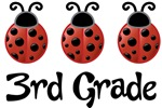3rd Grade School Ladybug Gifts and Apparel