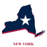 New York Elections
