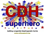 CDH Superhero Logos