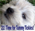 21st Birthday Gifts, Westie Tickles!