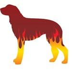 Scottish Deerhound Flames