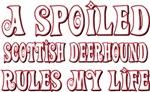 A Spoiled Scottish Deerhound
