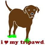I Love My Tripawd Lab