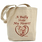 A Bully Stole My Heart