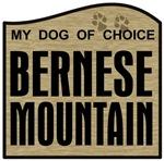 Bernese Mountain Dog - Choice