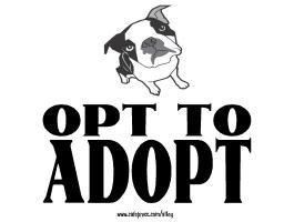 OPT TO ADOPT (dog)