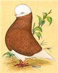 Baldhead Tumbler