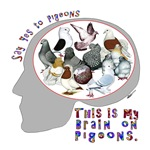 Brain On Pigeons