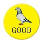 Pigeons-GOOD!