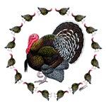 Turkey Circle