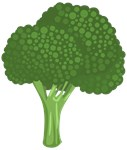 Broccoli Tree Shirts