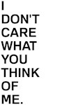 I Don't Care What You Think Of Me