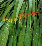 Tropical Shower