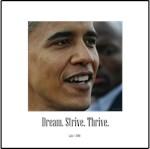DreamStriveThrive