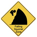Falling Squirrel Zone