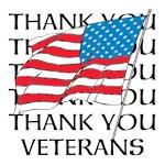 THANK YOU VETERANS (AMERICAN FLAG, USA)